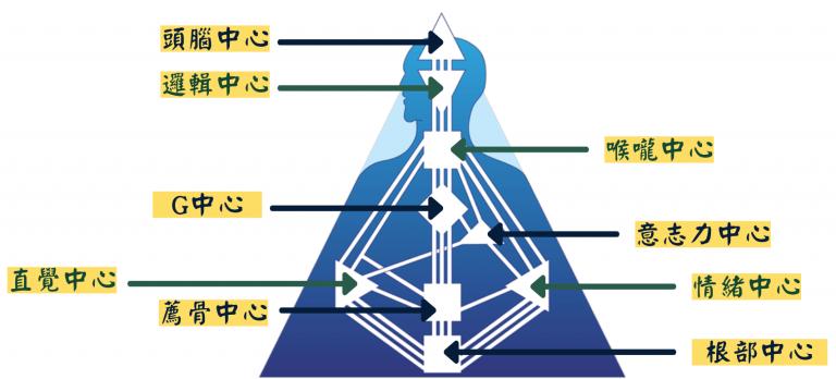 人類圖分析 能量中心